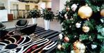Grote kerstbomen met versiering bij u geleverd
