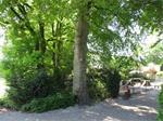 Vakantiepark Trimunt,Verhuur van tijdelijke woningen