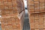 Sterke Douglas steigerhouten planken nu €1,50 pm1