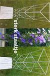 Plantrekken voor clematis hedera jasmijn