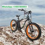 Fat Tire Mountain Beach Electric Bike