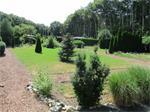 Recreatiepark Groningen (Trimunt) verhuur chalet