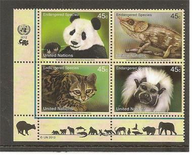 Grote foto united nations endangered species verzamelen postzegels overige