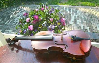Grote foto dragisha akoestisch klezmer duo trio kwartet muziek en instrumenten muzikanten en bands
