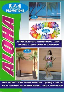Grote foto verhuur sara pop drenthe abraham huren 0599416200 diensten en vakmensen abraham