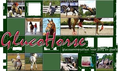 Grote foto bescherm de gewrichten van uw paard met glucohorse dieren en toebehoren beschermers
