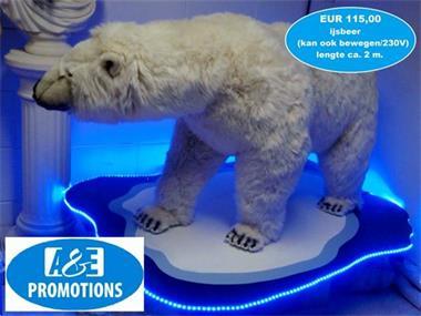 Grote foto ijsbeer verhuur den haag 0599 41 62 00 diversen overige