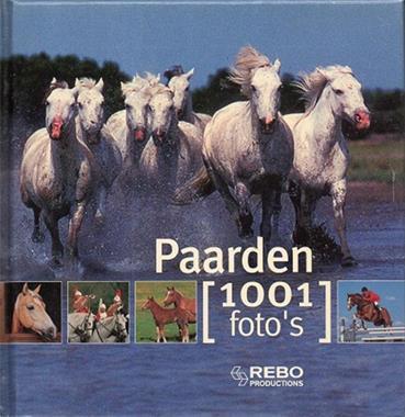 Grote foto paarden 1001 foto boeken dieren en huisdieren