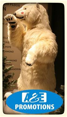 Grote foto verhuur noordpool decoratie ijsberen 0599 416200 diensten en vakmensen feesten