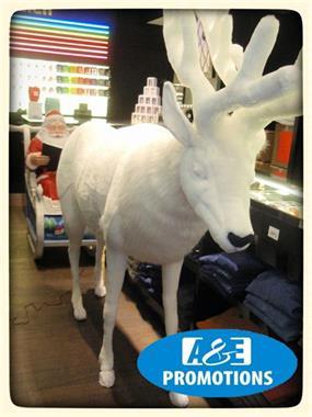 Grote foto huren frozen decoratie rotterdam zuidholland diversen kerst