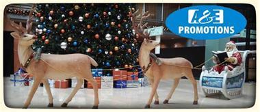 Grote foto arrenslede huren amersfoort almere 0599 416200 diversen kerst