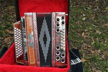 Grote foto accordeon styrian harmonica strasser muziek en instrumenten accordeons