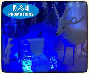 Frozen Decoratie Ijstroon Huren Brabant 0599416200 Bedrijfsuitjes