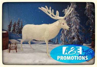 Grote foto siberische sneeuwpanter verhuur brabant eindhoven diensten en vakmensen entertainment