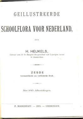 Grote foto geillustreerde schoolflora nederland heukels 1915 boeken natuur