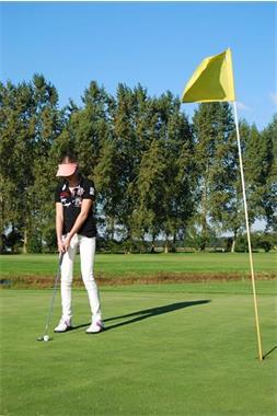 Grote foto golfclinic vanaf 8 personen 15 euro p.p. diversen overige diversen