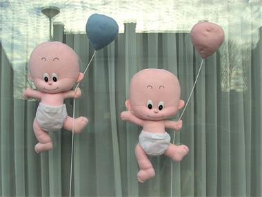 Grote foto geboortebord tweelingen en meerlingen en eenling kinderen en baby tweelingen en meerlingen