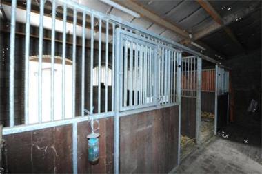 Grote foto te koop vrijstaand woonhuis weide paardenstallen huizen en kamers woonboerderij