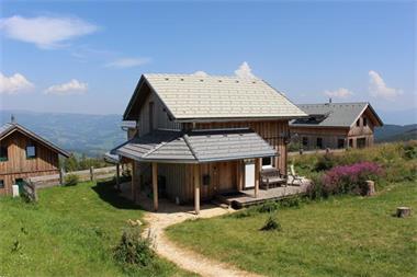 Grote foto gezellig comfortabel huis. berg skigebied vakantie oostenrijk
