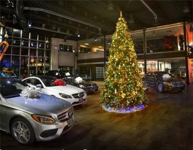 Grote foto leveren kerstbomen m t versiering z. nederland diensten en vakmensen kerst