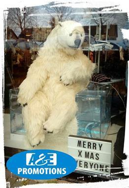Grote foto verhuur winterwonderland items oostende knokke diensten en vakmensen themafeestjes