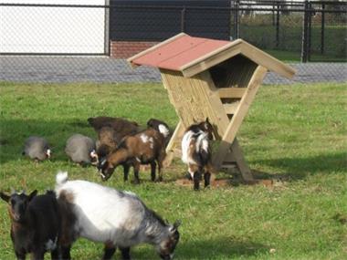 Grote foto maatwerk hooiberg geitenhok schapenhok agrarisch veehouderij