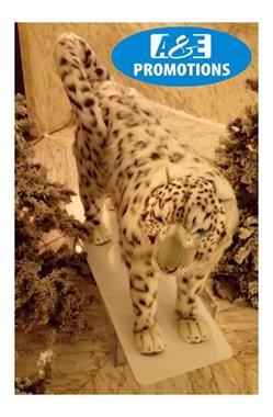 Grote foto verhuur siberische sneeuwpanter hengelo enschede diversen kerst