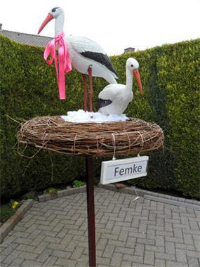 Grote foto 3d ooievaars 2 st op echt nest met roze strik kinderen en baby kraamcadeaus en geboorteborden