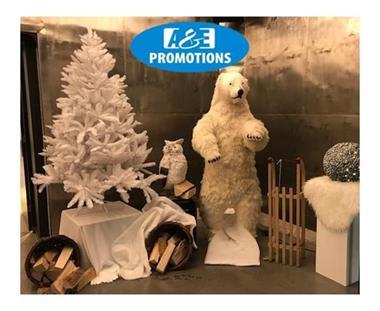 Grote foto verhuur winter etalering gent knokke hasselt diensten en vakmensen kerst