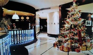 Grote foto feestelijk versierde kerstbomen bij u geleverd diensten en vakmensen abraham