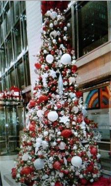 Grote foto levering kerstbomen afbeeldingen huur kerstboom diversen kerst
