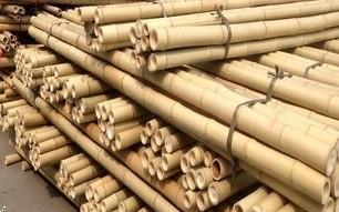Grote foto bamboepalen bamboestokken te koop tuin en terras tuinhout en palen