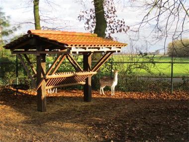 Grote foto vakantiepark heeft tijdelijk e woonruimte te huur ideaal bij vakantie nederland noord