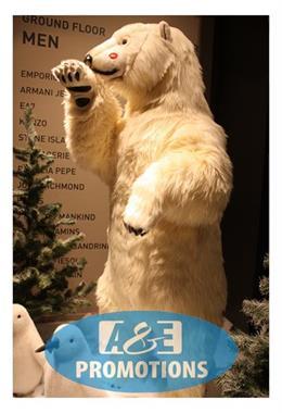 Grote foto ijs effect props verhuur den haag delft diversen kerst