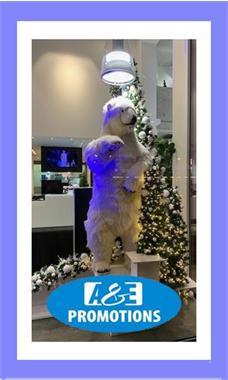 Grote foto huur winter simulatie props brugge gent hasselt diversen kerst