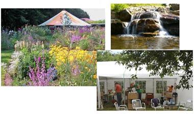 Grote foto beeldhouwen in bloementuin hortus nijmegen diensten en vakmensen cursussen en workshops