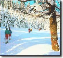 Grote foto wintersport tsjechie reuzengebergte 2 tot 10 pers vakantie europa oost