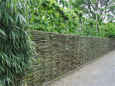 Grote foto verse wilgentenen wilgenteen wilgenschutting tuin en terras hekken en schuttingen