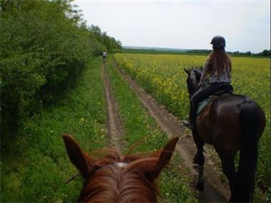 Grote foto ruiter paardrij arrangement hongarije vakantie sportief en actief