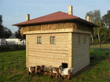 Grote foto nieuw schapenhok geitenhok ook maatwerk dieren en toebehoren schapen geiten en varkens