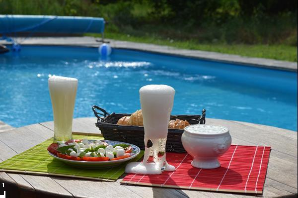 Grote foto ruime woning met zwembad op de hongaarse poesta vakantie hongarije