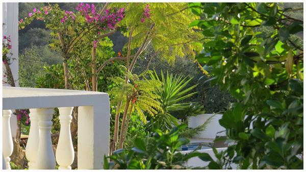Grote foto algarve paradijs op slechts 20 minuten van faro vakantie portugal