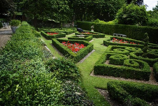 Grote foto engelse tuinen en parken rondreis op maat vakantie groepen en rondreizen
