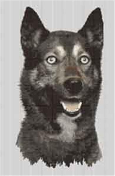 Grote foto borduurpakket siberian husky dieren en toebehoren overige dieren