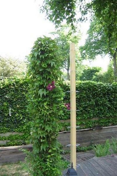 Grote foto plantensteun klimmende planten klimplantklemmen tuin en terras tuinhout en palen