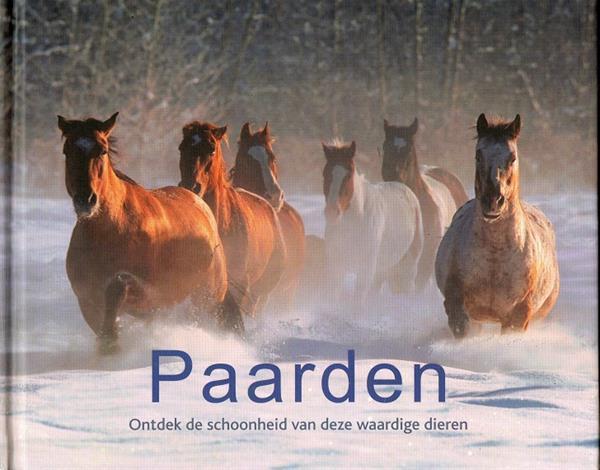 Grote foto paarden ontdek de schoonheid van deze wwardige die boeken dieren en huisdieren