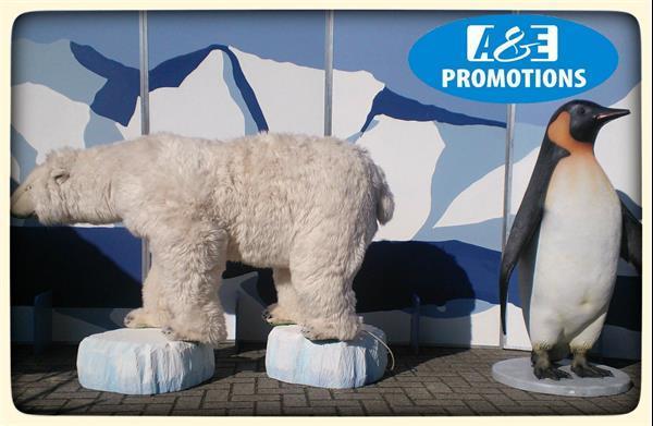 Grote foto winterdecoratie huren amsterdam utrecht den haag diensten en vakmensen entertainment