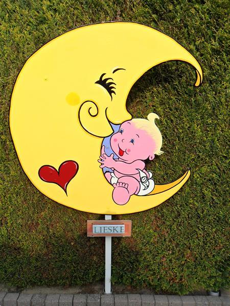 Grote foto origineel geboortebord uil op 3d nest kinderen en baby kraamcadeaus en geboorteborden
