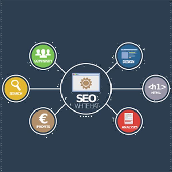 Grote foto search engine optimization diensten en vakmensen computer en internet experts
