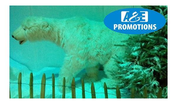 Grote foto ijsmuur verhuur winter fotoshoot amsterdam haarlem diensten en vakmensen kerst